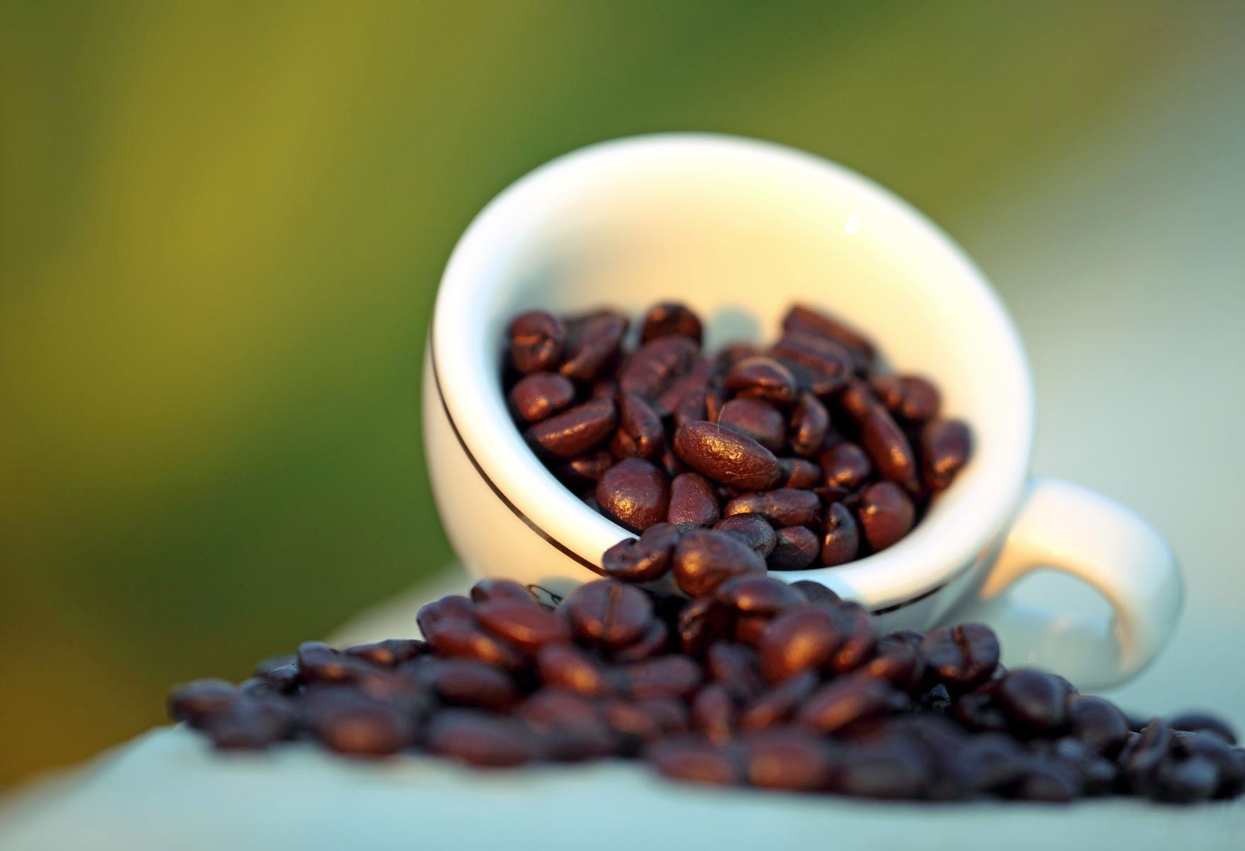 Macchina caffe cialde 12 volt